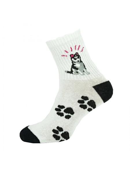 Шкарпетки з Хаскі
